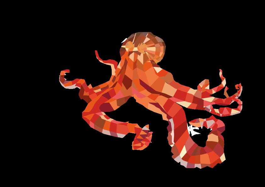 pieuvre poly